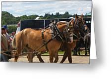 Horse Pull I Greeting Card