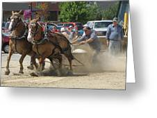 Horse Pull K Greeting Card