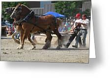Horse Pull Team A Greeting Card