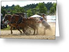 Horse Pulling Team Greeting Card
