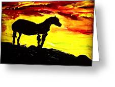 Horse Rider In The Sunset Greeting Card