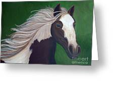 Horse Run Greeting Card