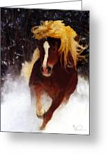 Horse Running In Snow Greeting Card