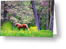 Horse Running In Spring Woods Greeting Card