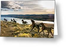 Horse Sculpture 4 Greeting Card