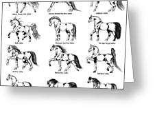 Horse Sketch Composite Greeting Card