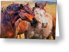Horse Snuggle Greeting Card