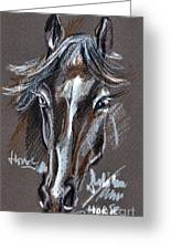 Horse Study Greeting Card