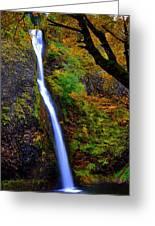 Horse Tail Falls - Autumn  Greeting Card