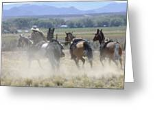 Horse Thief Greeting Card