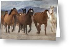 Horses-03 Greeting Card