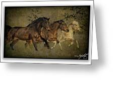 Horses 30 Greeting Card