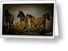 Horses 34 Greeting Card