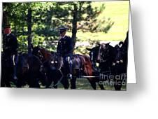 Horses At Arlington Cemetery Greeting Card