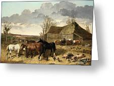 Horses Eating From A Manger, With Pigs And Chickens In A Farmyard Greeting Card
