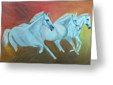 Horses Gone Wild Greeting Card