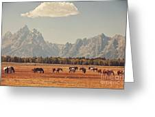 Horses Grazing In Front Of The Teton's Greeting Card