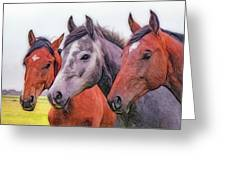 Horses - Id 16217-202746-6154 Greeting Card