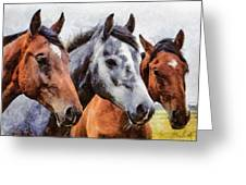 Horses - Id 16217-202754-0357 Greeting Card