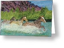 Horses In Stream Greeting Card