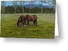 Horses Of Romance Greeting Card