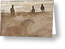 Horses Run With Us Collage Greeting Card