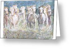 Horses Running In Water Greeting Card