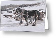 Horses Wearing Snowshoes Historical Vignette Greeting Card