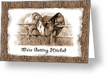 Horses Western Wedding Invitation Getting Hitched Greeting Card
