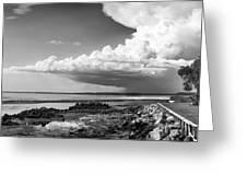 Horseshoe Beach Greeting Card