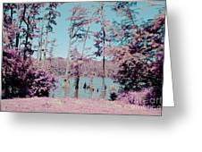 Horseshoe Conservation Area Infrared Greeting Card