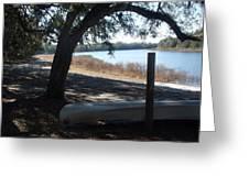 Horseshoe Lake At Orange Springs Florida Greeting Card
