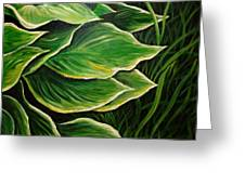 Hostas And Grass Painting Greeting Card
