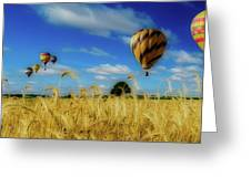 Hot Air Balloons Over A Wheat Field Greeting Card