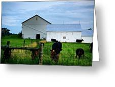 Hot Eve Night On The Farm Greeting Card