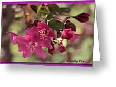 Hot Pink Blossoms Greeting Card