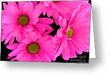 Hot Pink Flowers Greeting Card
