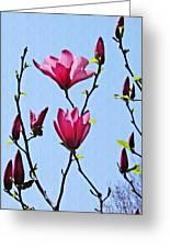 Hot Pink Magnolias Greeting Card