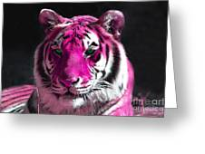 Hot Pink Tiger Greeting Card