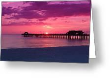 Hot Purple Greeting Card