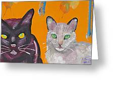 House Cats Greeting Card