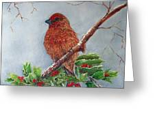 House Finch In Winter Greeting Card