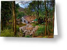 House In China Woods Greeting Card
