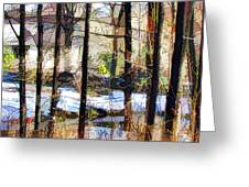 House Surrounded By Trees 2 Greeting Card