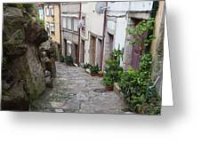Houses Along Alley In The Old Town Of Porto Greeting Card