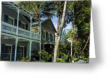 Houses In The Palms  Greeting Card