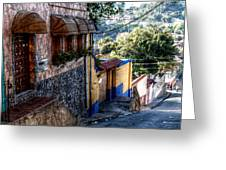 Houses Of Hatillo Greeting Card