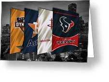 Houston Sports Teams 2 Greeting Card