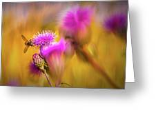 Hoverfly Thistle #g7 Greeting Card