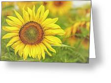 How Do You Dew, Sunflower Greeting Card
